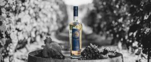 Bouteille de vodka nadé en plein milieu des vignes